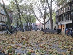 Herfst op het pomppleintje